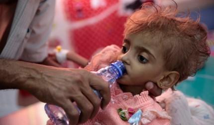 Yemen Appeal