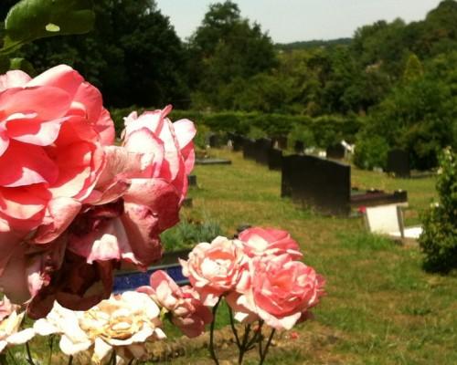 Cemetery Visit 2013